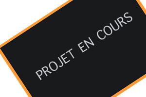 projet-en-cours